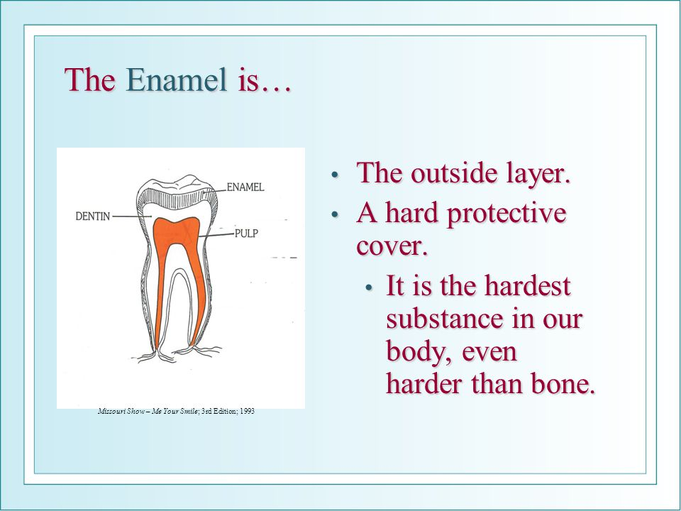The Enamel is… The outside layer. The outside layer. A hard protective cover. A hard protective cover. It is the hardest substance in our body, even h