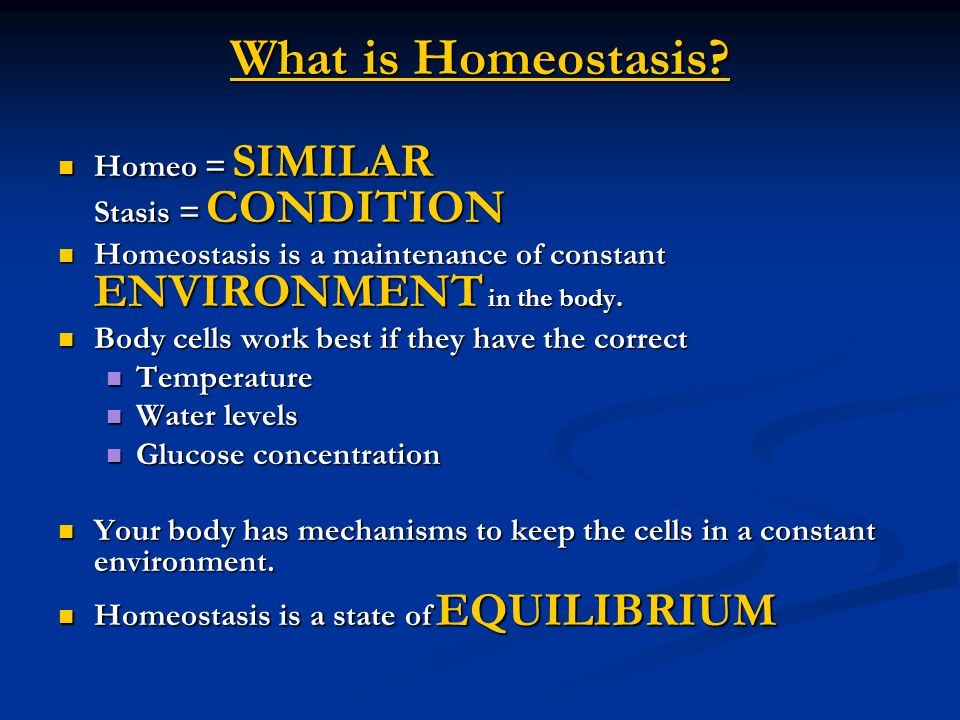 What is Homeostasis. What is Homeostasis.