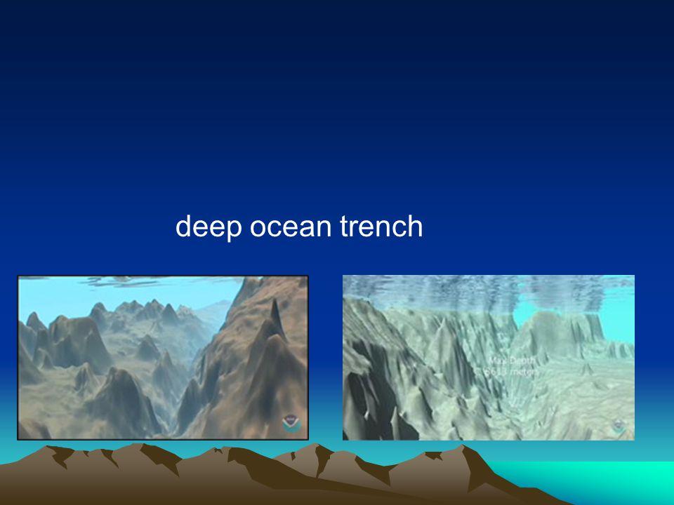 deep ocean trench