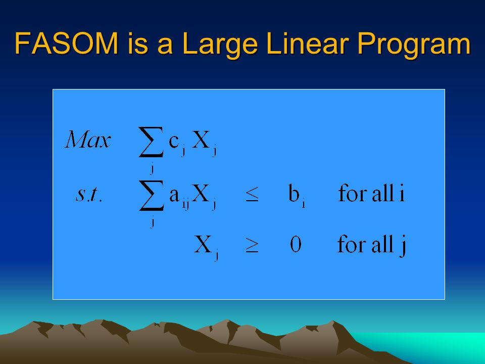 FASOM is a Large Linear Program