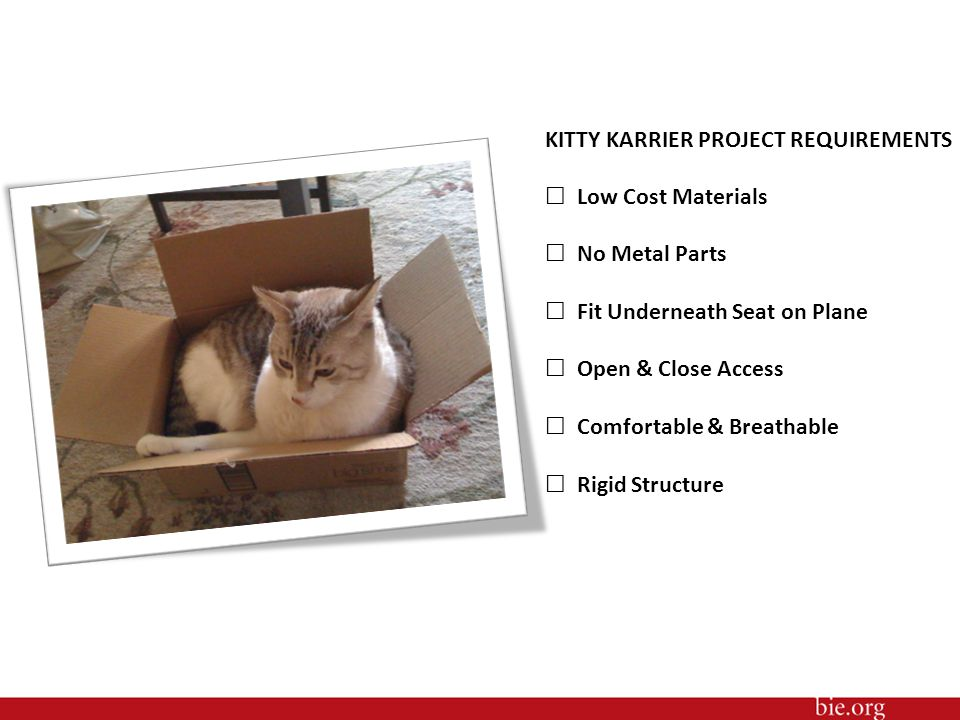 KITTY KARRIER PROJECT REQUIREMENTS ☐ Low Cost Materials ☐ No Metal Parts ☐ Fit Underneath Seat on Plane ☐ Open & Close Access ☐ Comfortable & Breathable ☐ Rigid Structure