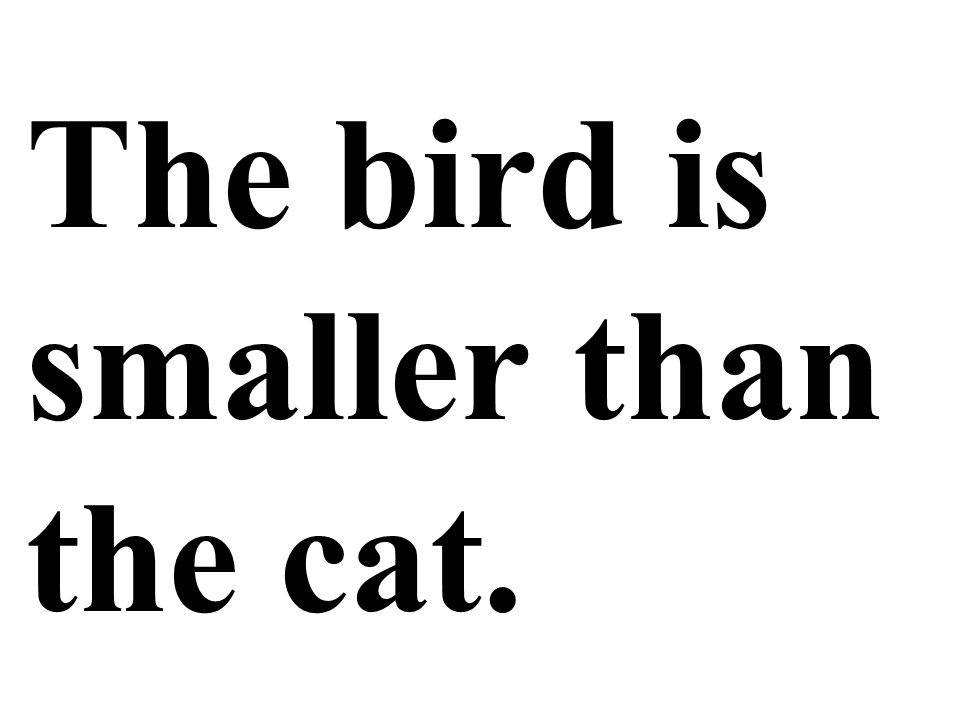 The bird is smaller than the cat.