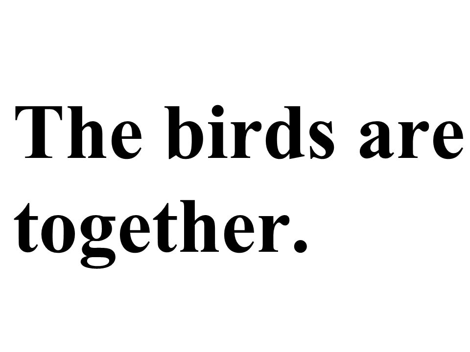 The birds are together.