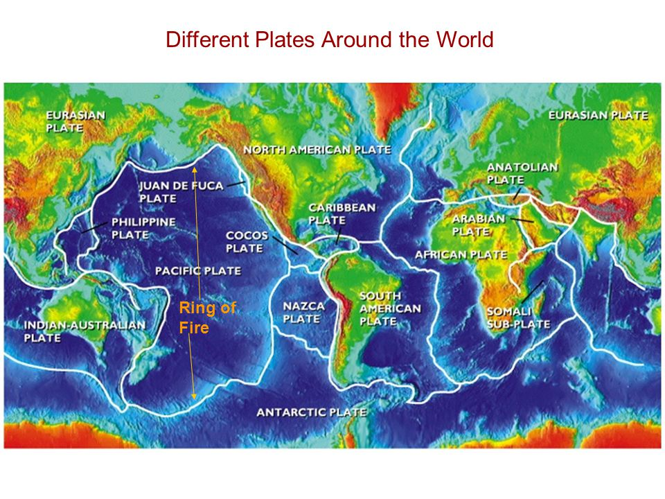Different Plates Around the World Ring of Fire