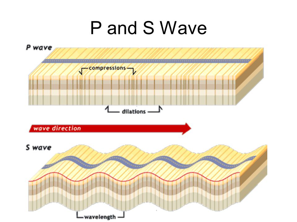 P and S Wave