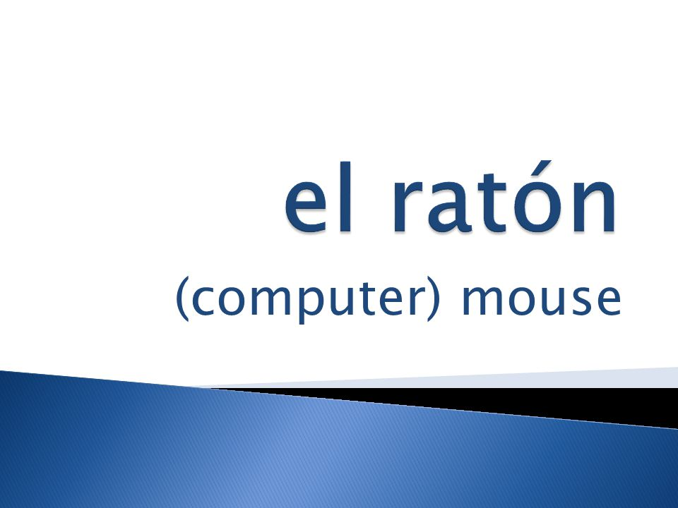(computer) mouse