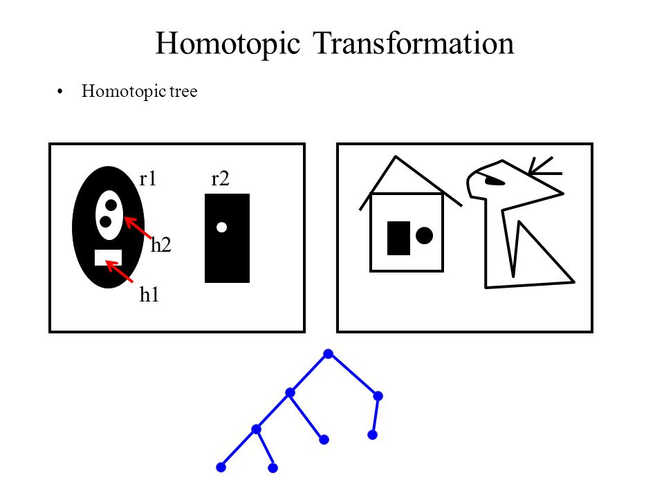 Homotopic Transformation Homotopic tree r1r2 h1 h2
