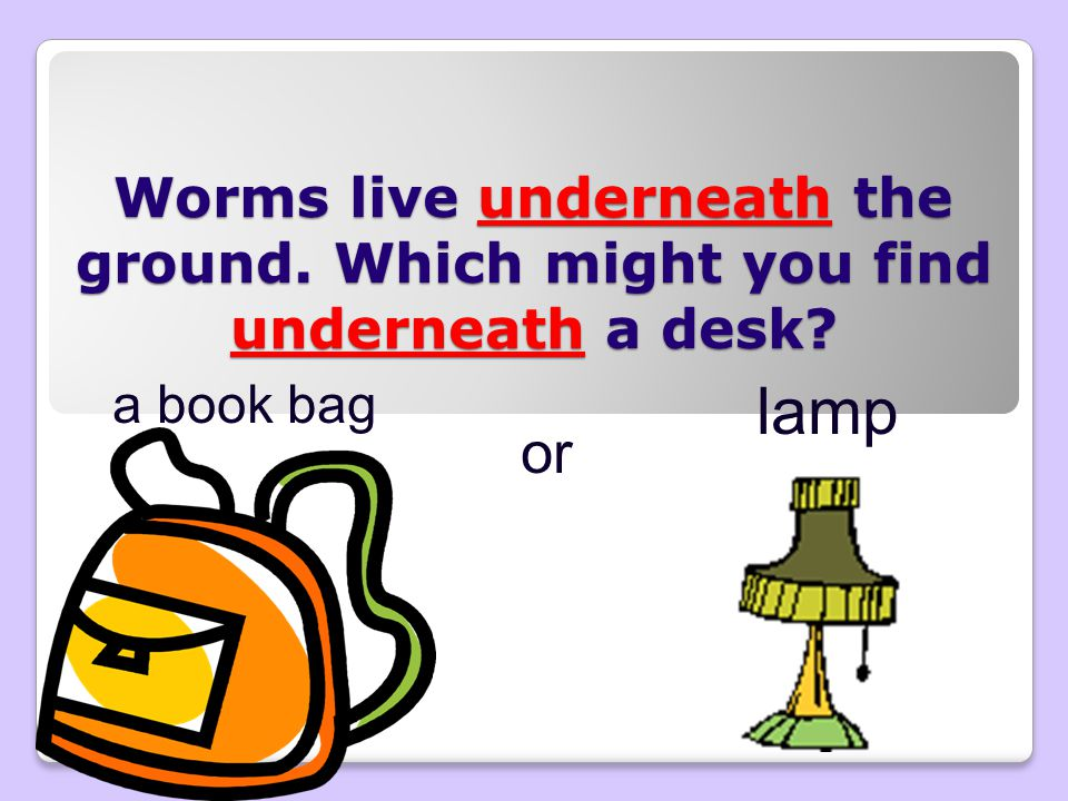 Worms live underneath the ground. Which might you find underneath a desk? a book bag or lamp