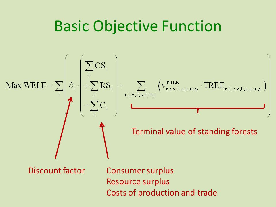Basic Objective Function Terminal value of standing forests Discount factorConsumer surplus Resource surplus Costs of production and trade
