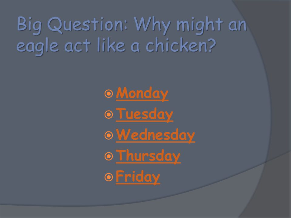 Big Question: Why might an eagle act like a chicken?  Monday Monday  Tuesday Tuesday  Wednesday Wednesday  Thursday Thursday  Friday Friday