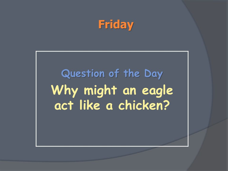 Friday Question of the Day Why might an eagle act like a chicken?