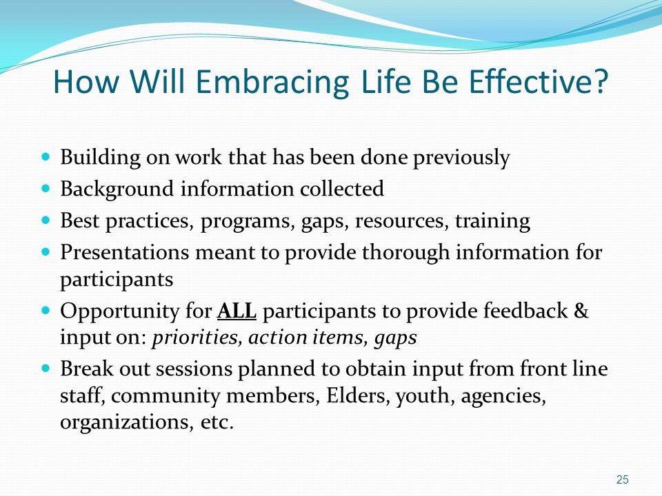 How Will Embracing Life Be Effective? Building on work that has been done previously Background information collected Best practices, programs, gaps,