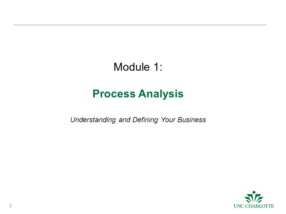 3 Module 1: Process Analysis Understanding and Defining Your Business