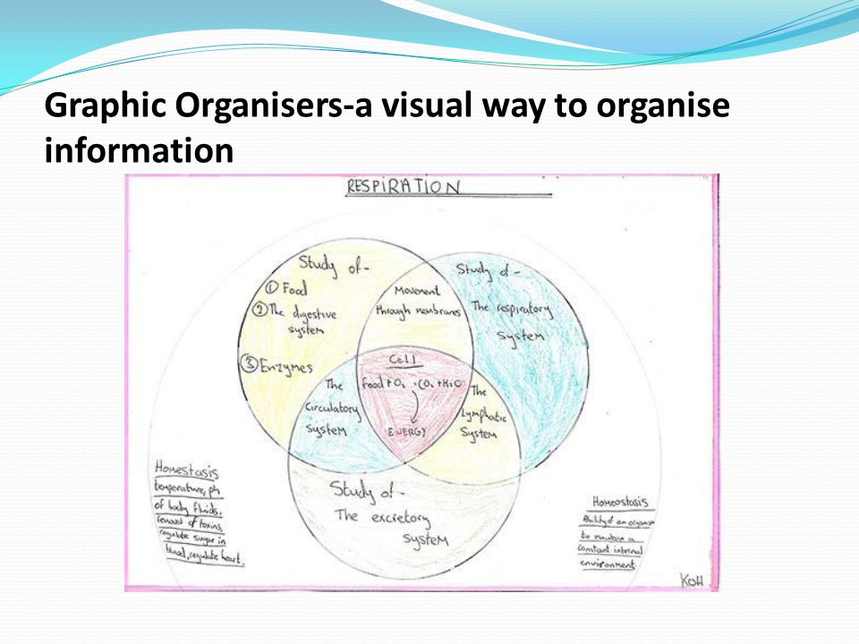 Graphic Organisers-a visual way to organise information