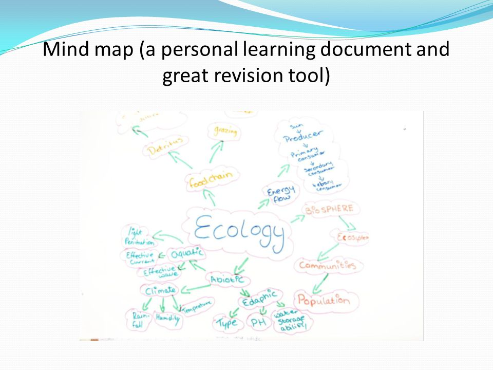 Mind map (a personal learning document and great revision tool)