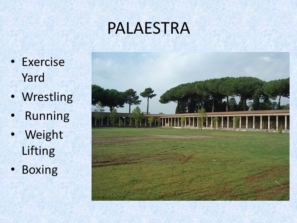 PALAESTRA Exercise Yard Wrestling Running Weight Lifting Boxing