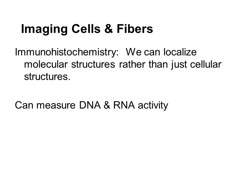 Imaging Cells & Fibers Immunohistochemistry: We can localize molecular structures rather than just cellular structures.