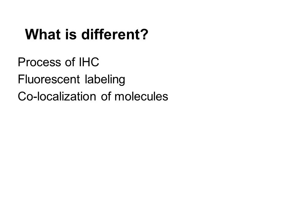 What is different? Process of IHC Fluorescent labeling Co-localization of molecules