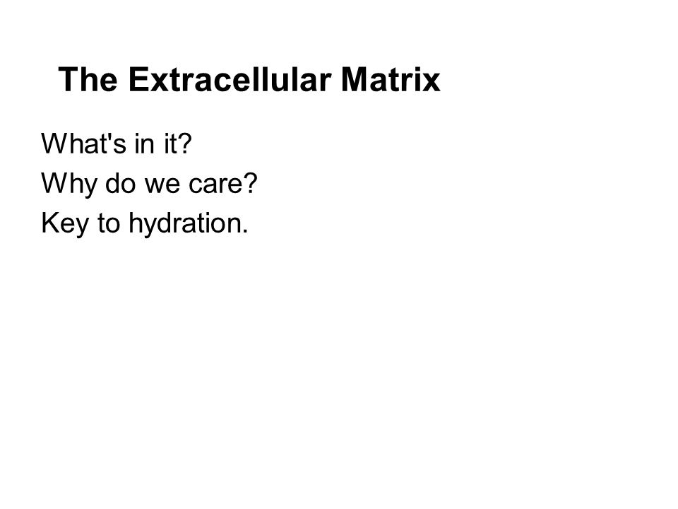 The Extracellular Matrix What s in it Why do we care Key to hydration.