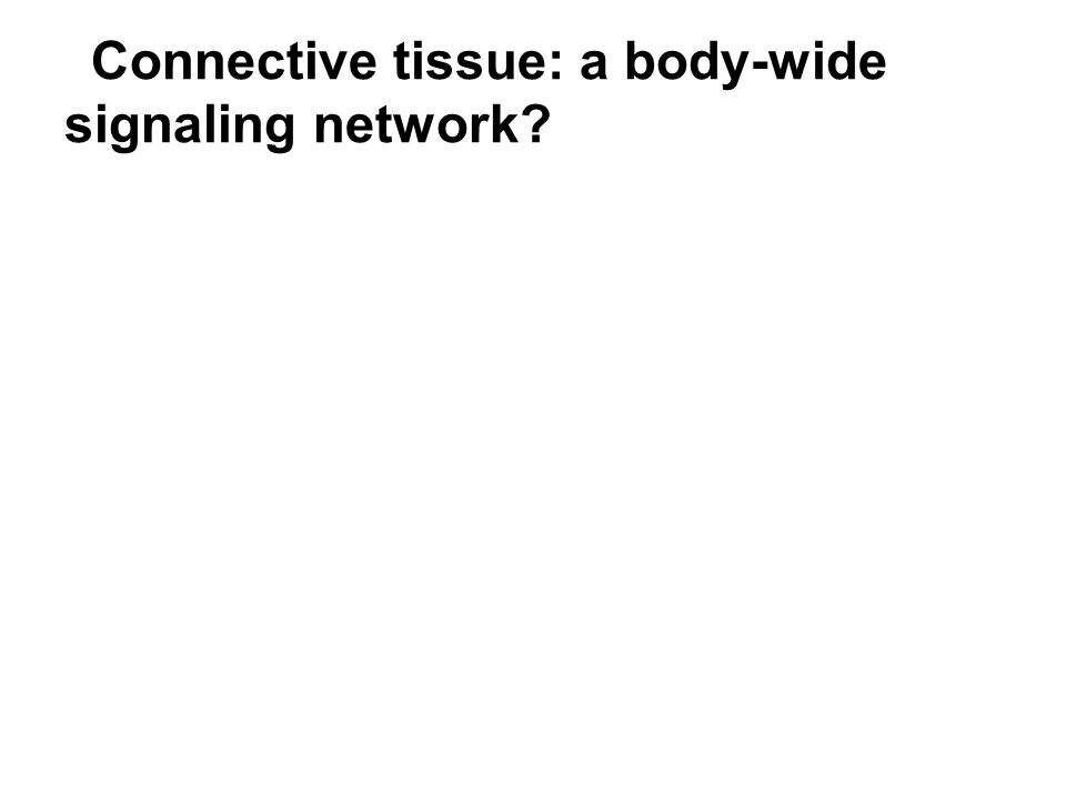 Connective tissue: a body-wide signaling network?