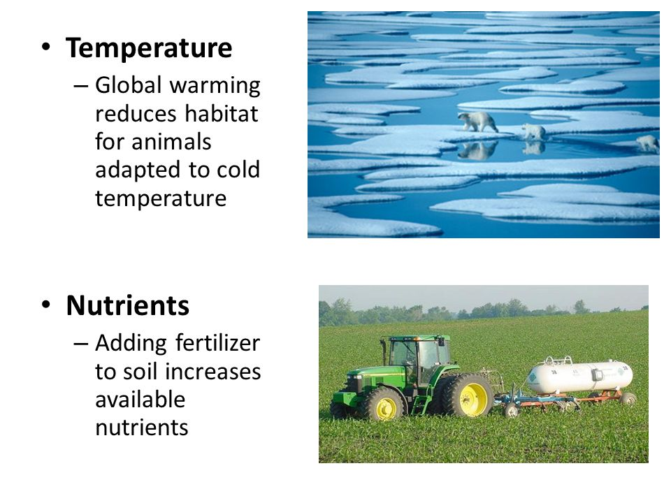 Temperature – Global warming reduces habitat for animals adapted to cold temperature Nutrients – Adding fertilizer to soil increases available nutrien