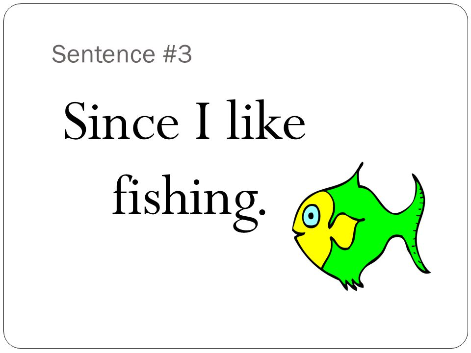 Sentence #3 Since I like fishing.