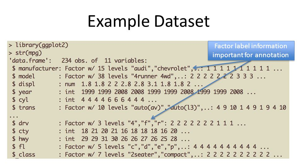 Example Dataset Factor label information important for annotation