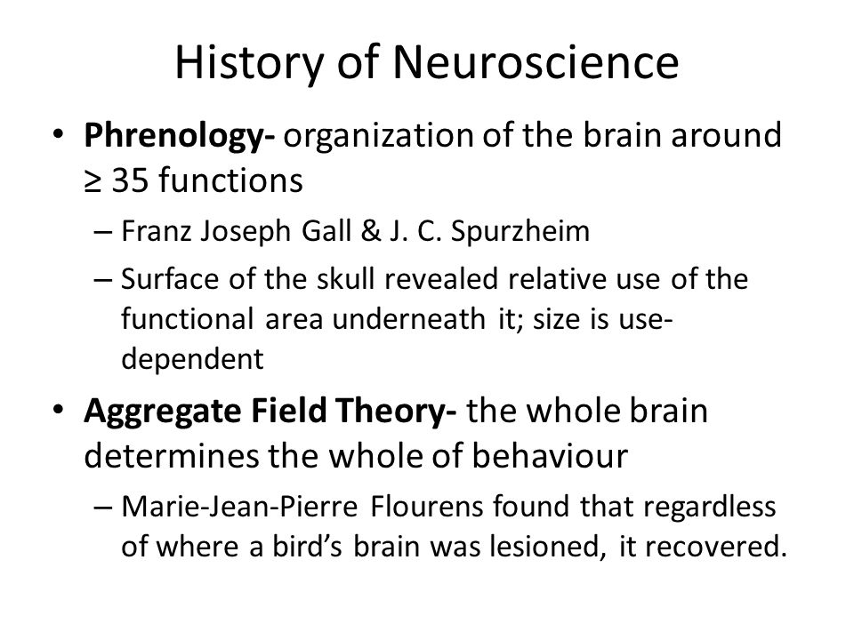 History of Neuroscience Phrenology- organization of the brain around ≥ 35 functions – Franz Joseph Gall & J.