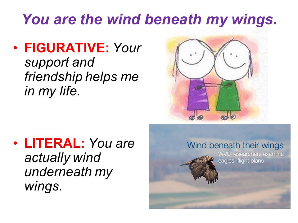 You are the wind beneath my wings. FIGURATIVE: Your support and friendship helps me in my life. LITERAL: You are actually wind underneath my wings.
