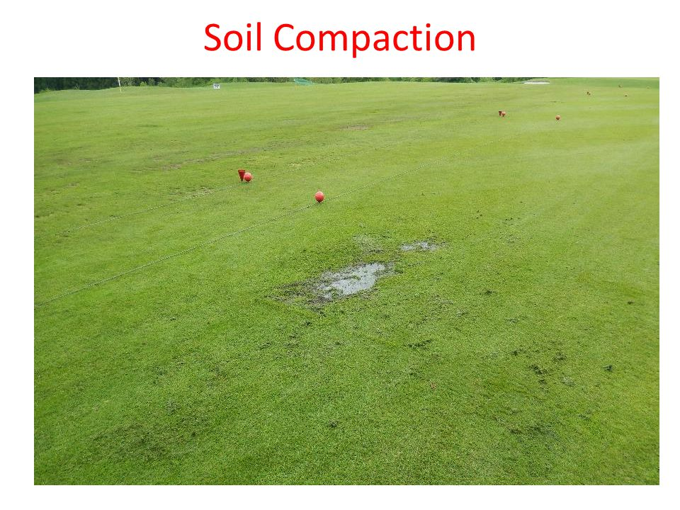 Soil compaction Normally spaces between soil particles are filled with air and water Soil compaction depends on soil type Soil compaction damage soil structure Soil compaction causes poor, shallow rooting and as result roots receive less oxygen This is causing stress, illnesses and reduced plant growth.