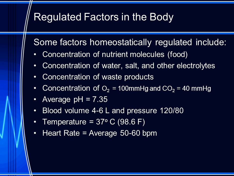 Effects of Homeostasis Homeostasis is continually being disrupted by –External stimuli heat, cold, lack of oxygen, pathogens, toxins –Internal stimuli Body temperature Blood pressure Concentration of water, glucose, salts, oxygen, etc.