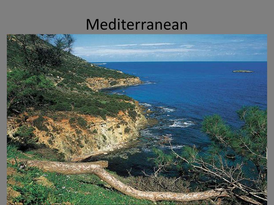 ©CSCOPE 2009 Mediterranean