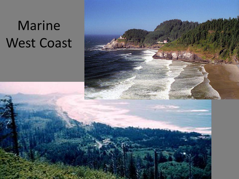 ©CSCOPE 2009 Marine West Coast