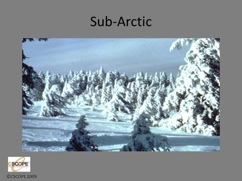 ©CSCOPE 2009 Sub-Arctic