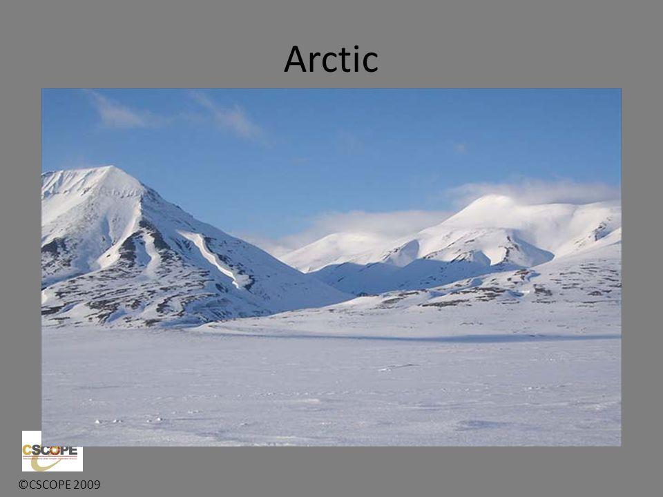 ©CSCOPE 2009 Arctic