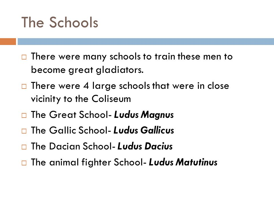 The Schools  There were many schools to train these men to become great gladiators.