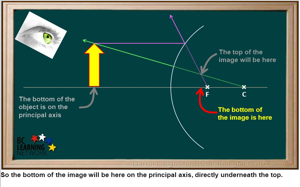 × So the bottom of the image will be here on the principal axis, directly underneath the top.