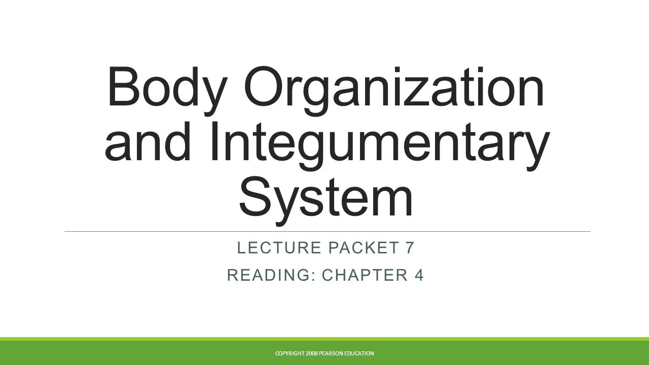 Body Organization and Integumentary System LECTURE PACKET 7 READING: CHAPTER 4 COPYRIGHT 2008 PEARSON EDUCATION