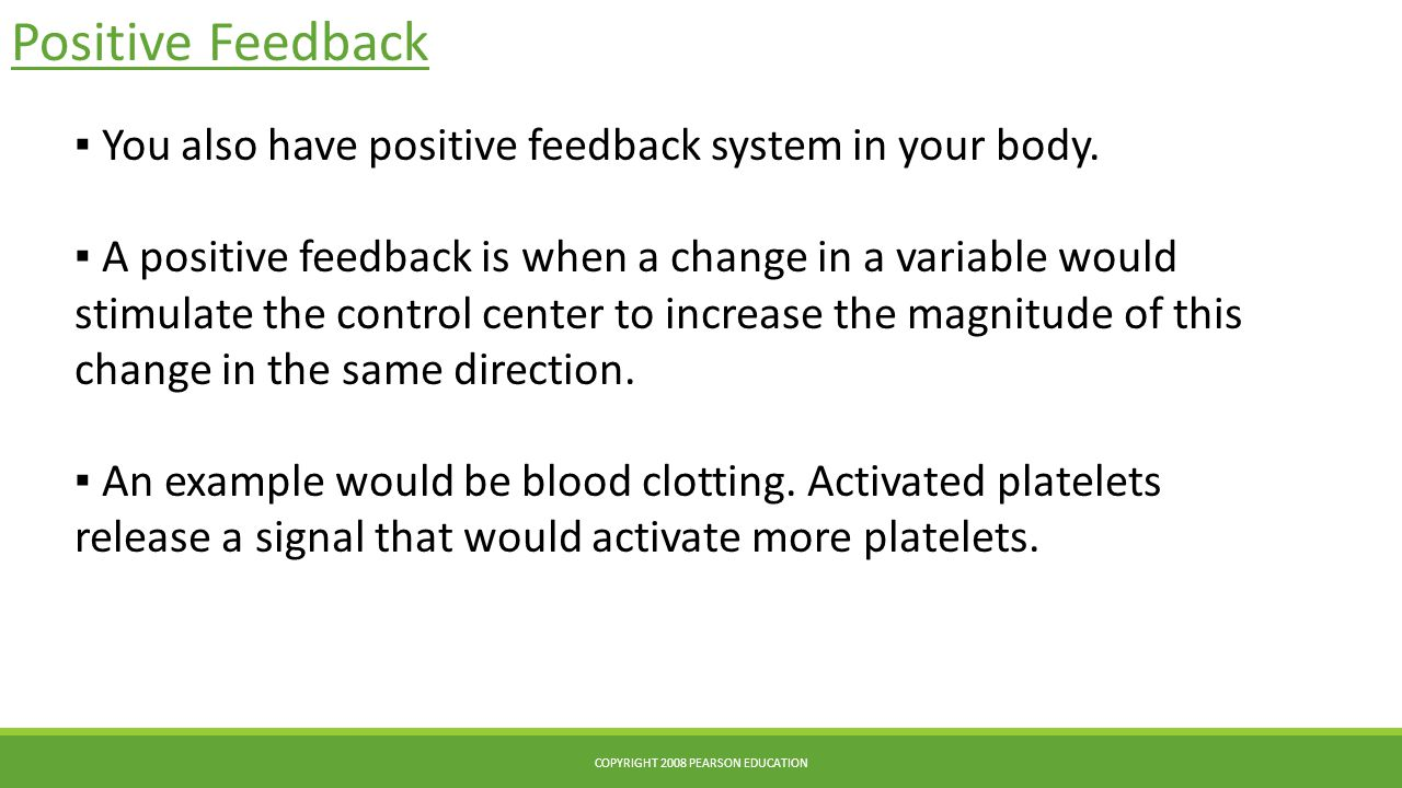 Positive Feedback COPYRIGHT 2008 PEARSON EDUCATION ▪ You also have positive feedback system in your body.