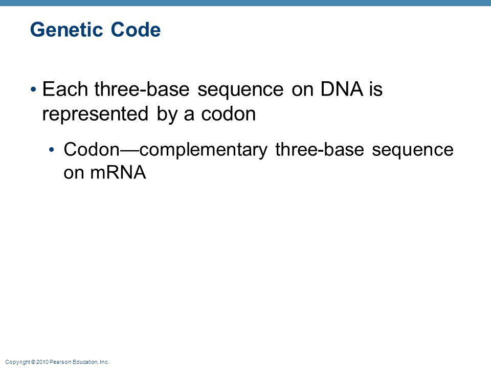 Copyright © 2010 Pearson Education, Inc. Genetic Code Each three-base sequence on DNA is represented by a codon Codon—complementary three-base sequenc