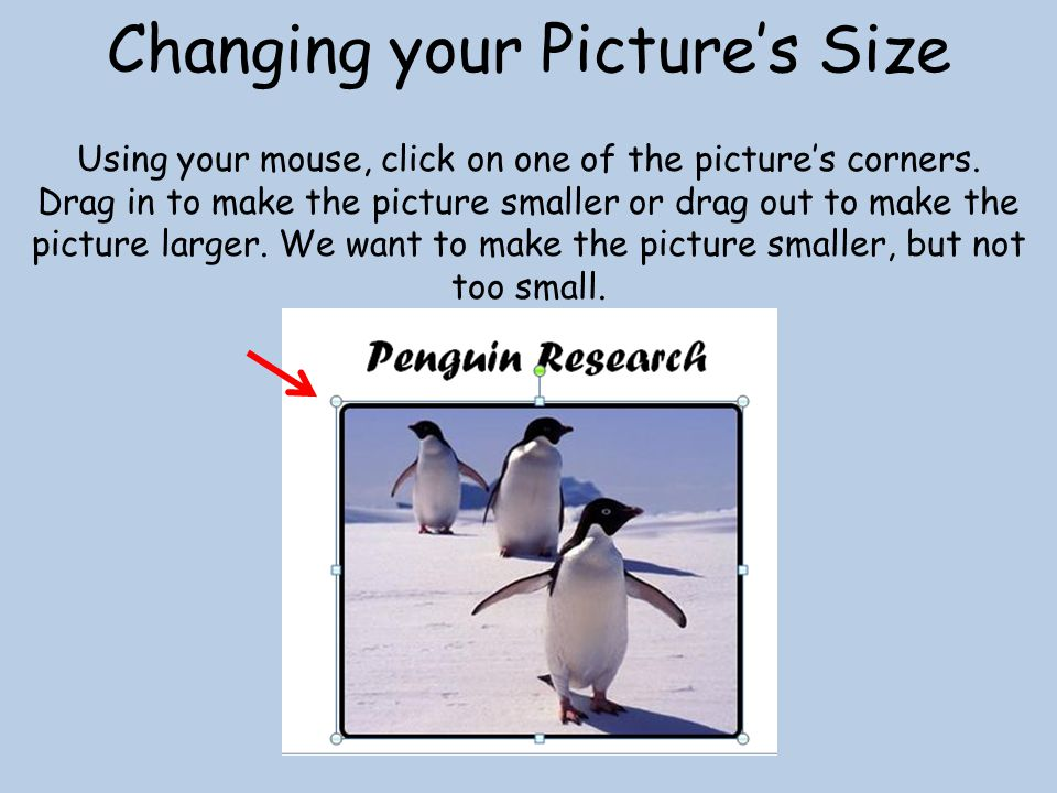 Changing your Picture's Size Using your mouse, click on one of the picture's corners.