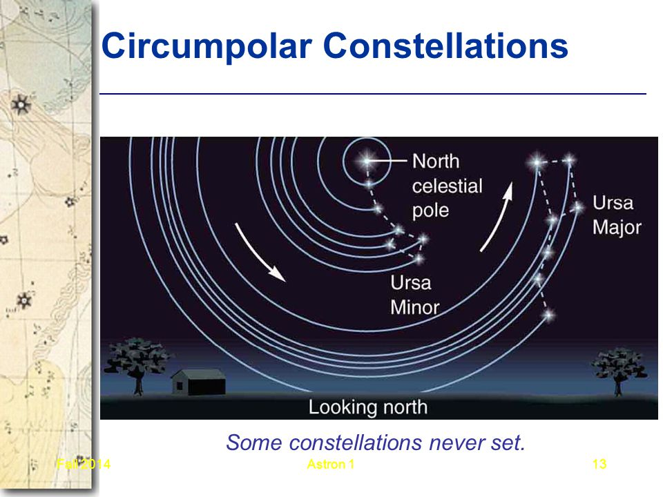 Circumpolar Constellations Some constellations never set. Fall 2014Astron 113