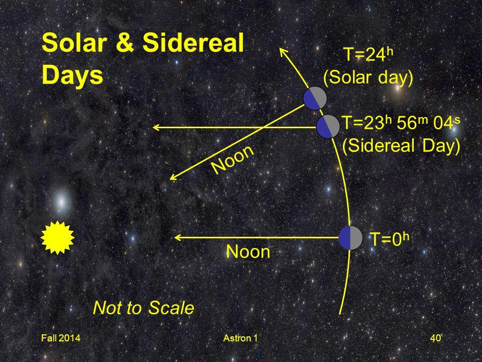 Fall 2014Astron 140 Noon T=0 h T=23 h 56 m 04 s (Sidereal Day) T=24 h (Solar day) Noon Not to Scale Solar & Sidereal Days