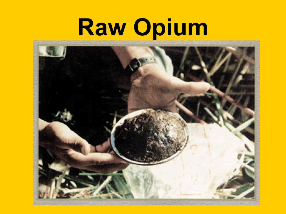 Raw Opium
