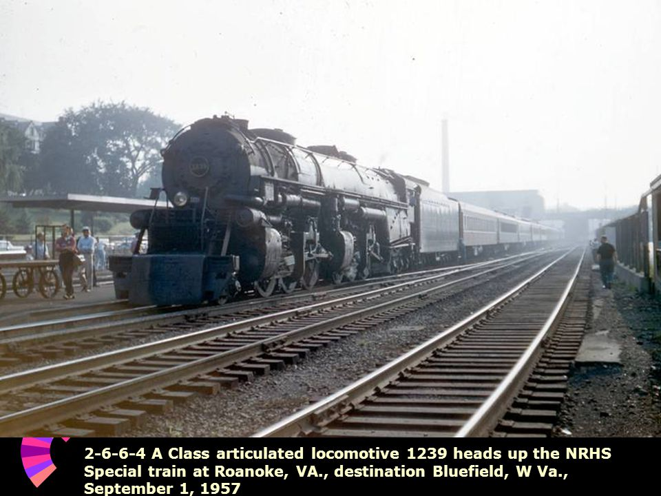2-6-6-4 A Class articulated locomotive 1239 heads up the NRHS Special train at Roanoke, VA., destination Bluefield, W Va., September 1, 1957