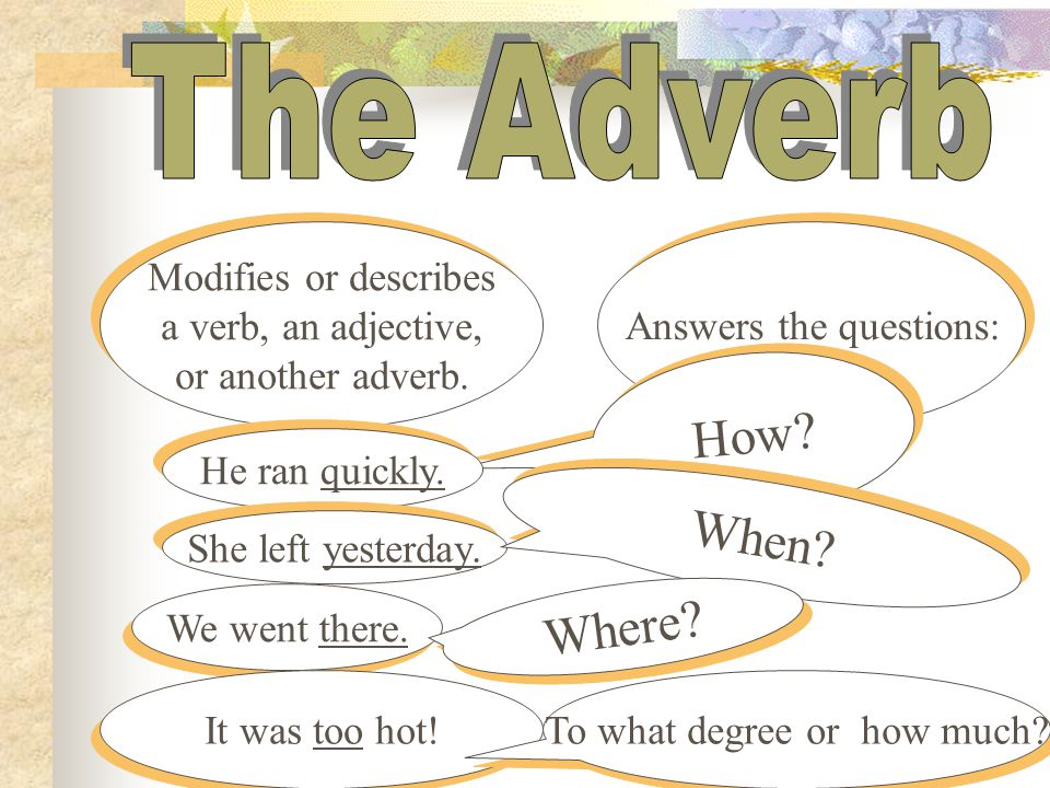 Modifies or describes a noun or pronoun. Do you have a silk scarf? I need three Euros. Did you bring the tool box? Answers these questions: