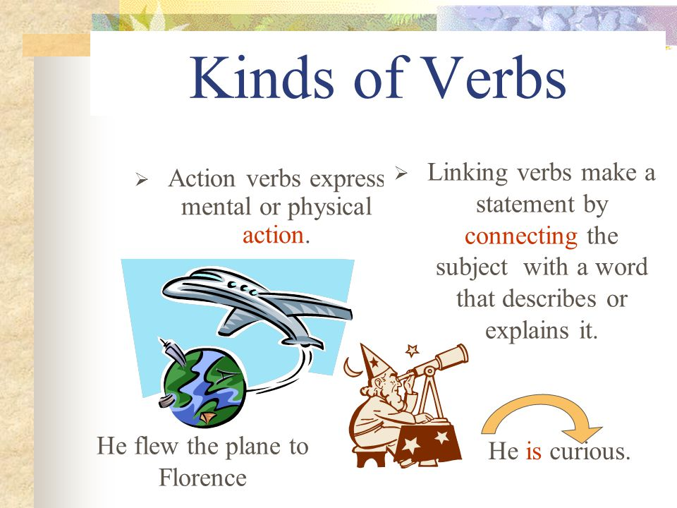 Kinds of Verbs  Action verbs express mental or physical action.