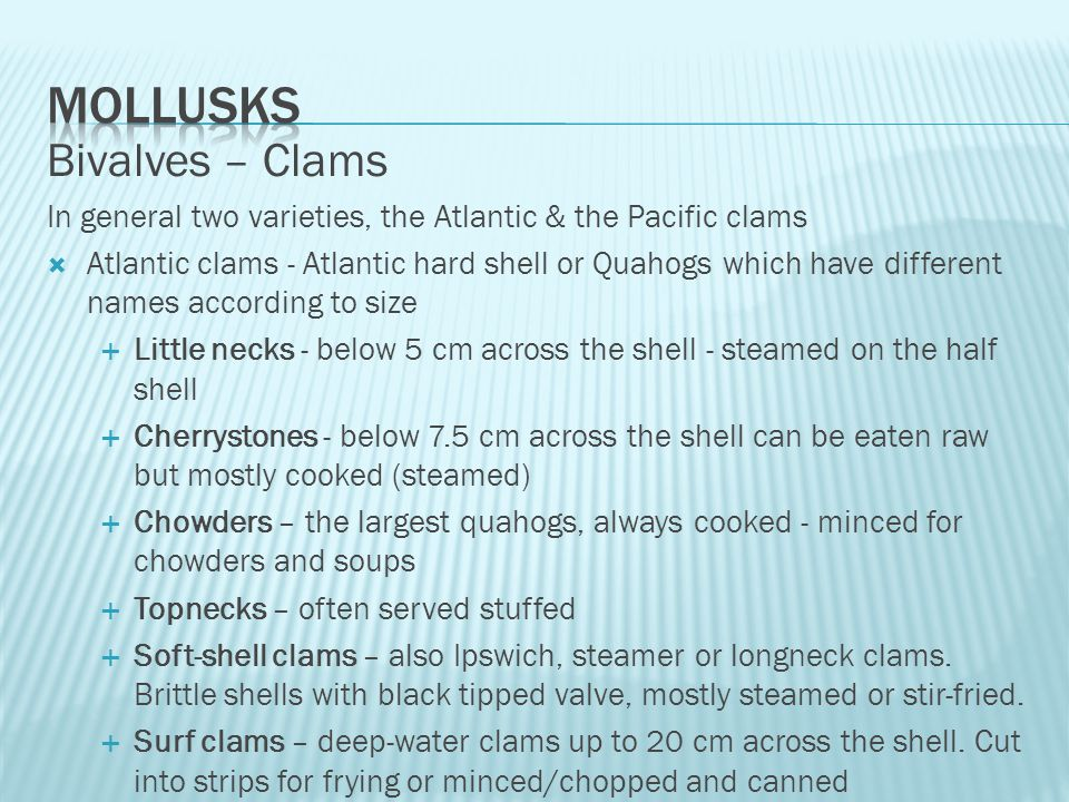 Bivalves – Clams In general two varieties, the Atlantic & the Pacific clams  Atlantic clams - Atlantic hard shell or Quahogs which have different names according to size  Little necks - below 5 cm across the shell - steamed on the half shell  Cherrystones - below 7.5 cm across the shell can be eaten raw but mostly cooked (steamed)  Chowders – the largest quahogs, always cooked - minced for chowders and soups  Topnecks – often served stuffed  Soft-shell clams – also Ipswich, steamer or longneck clams.