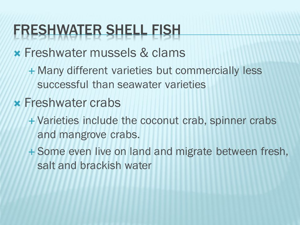  Freshwater mussels & clams  Many different varieties but commercially less successful than seawater varieties  Freshwater crabs  Varieties include the coconut crab, spinner crabs and mangrove crabs.