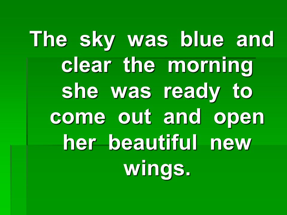 The sky was blue and clear the morning she was ready to come out and open her beautiful new wings.